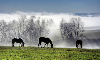 Keeneland Photograph - Three Horse Morning by Sam Davis Johnson