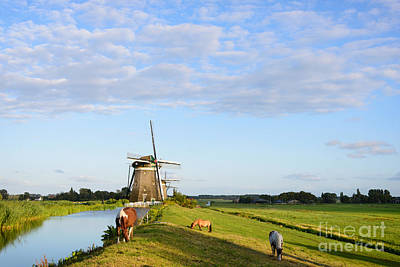 Photograph - Three Horses, Three Windmills by IPics Photography