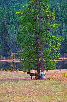 Photograph - Three Horses Under A Pine Tree Digital Oil Painting by Sharon Talson