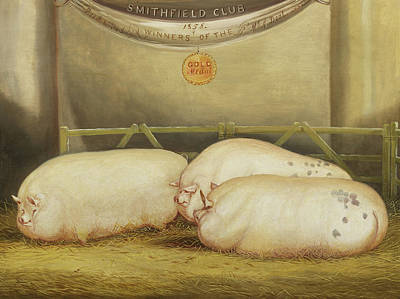 Piggies Painting - Three Improved Leicesters In A Pen At 1858 Smithfield Club Christmas Show by John Vine