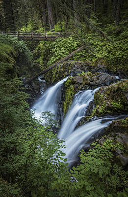 Olympic National Park Photograph - Three In Sol Duc by Jon Glaser