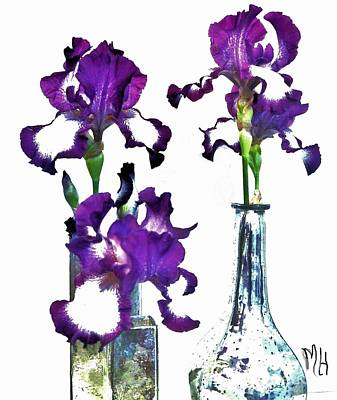 Histogram Photograph - Three Irises In Vases by Marsha Heiken