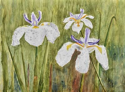 Three Irises In The Rain Original