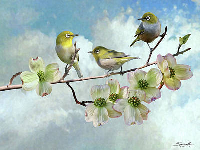 Digital Art - Three Japanese White-eyes In Dogwood Tree  by IM Spadecaller