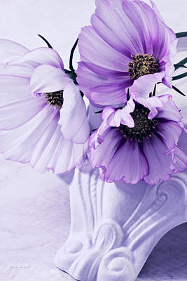 Photograph - Three Lavender Cosmos by Sandra Foster