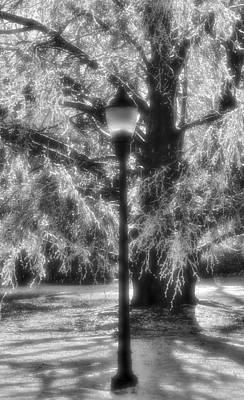 Photograph - Three Lights by Michael Mazaika