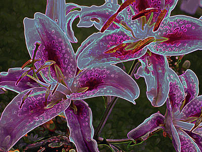 Farm Life Paintings Rob Moline - Three Lilies 5 by Lynda Lehmann