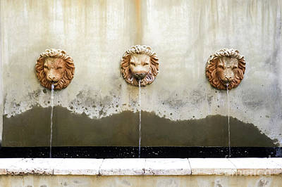 Photograph - Three Lions Fountain by Heather Green