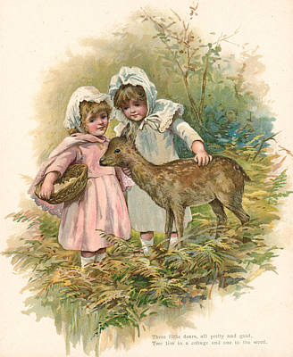 Deer Drawing - Three Little Dears by English School