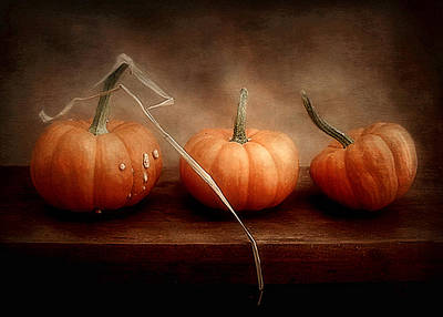 Photograph - Three Little Pumpkins by Louise Kumpf