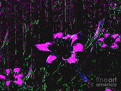 Digital Art - Three Magenta Lilies - Digital Abstract Painting by Merton Allen