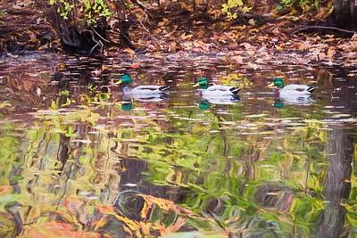 Digital Art - Three Mallards. by Rusty R Smith