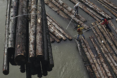 Transportation Of Goods Photograph - Three Men Push Floating Logs by Joel Sartore