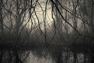 Photograph - Three Mile River IIi Toned by David Gordon