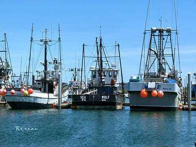 Photograph - Three Musketeer Fishing Boats by Sadie Reneau