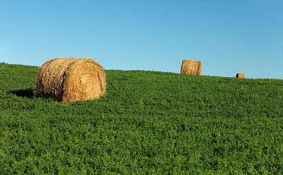 Photograph - Three Old Bales by Todd Klassy