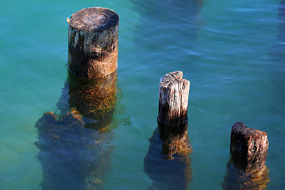 Photograph - Three Old Pilings In Sun by Mary Bedy