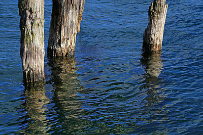 Photograph - Three Old Pilings by Mary Bedy