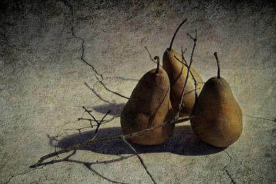 Photograph - Three Pears by Eleanor Caputo