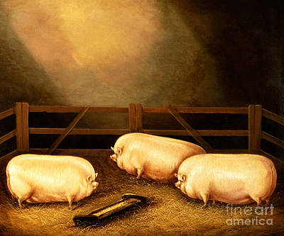 Big 3 Painting - Three Prize Pigs by English School