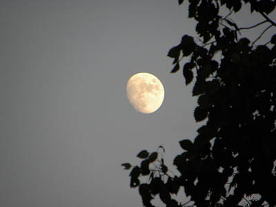 Outdoors Photograph - Three Quarter Moon by Ric Schafer
