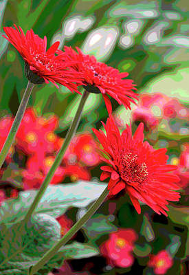 Photograph - Three Red Gerberas Posterized by Suzanne Gaff