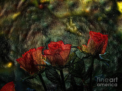 Photograph - Three Red Roses Organic by Lance Sheridan-Peel