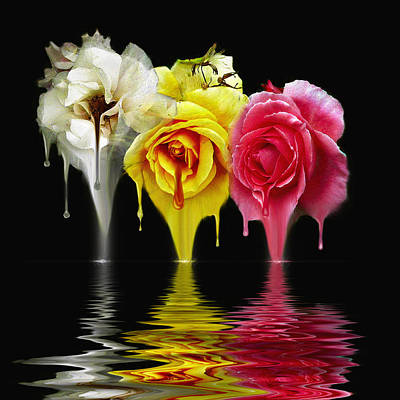 Digital Art - Tears Of Roses by Gordon Engebretson