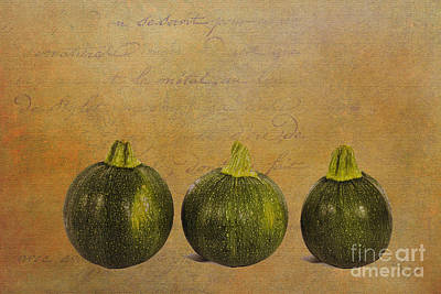 Photograph - Three Round Squash by Diane Macdonald