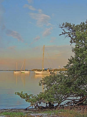 Photograph - Three Sailboats At Rest  by HH Photography of Florida