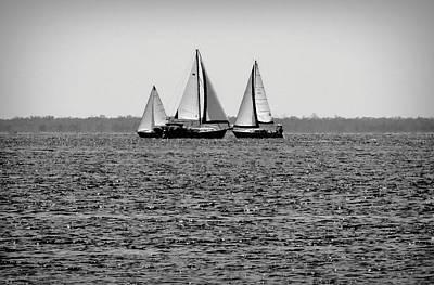 Photograph - Three Sails by Rosalie Scanlon