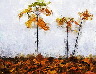 Photograph - Three Saplings by Anna Louise