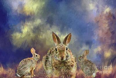 Photograph - Three Scared Lagomorphs by Janette Boyd