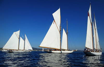 Photograph - Three Schooners by Lainie Wrightson
