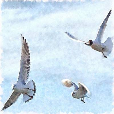 Painting - Three Seagulls Watercolor by Tracey Harrington-Simpson
