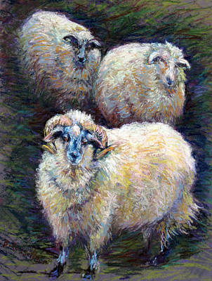 Cider Mill Painting - Three Sheep In Winter Cover by B Rossitto