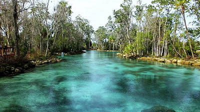 Photograph - Three Sisters Springs Long View by Judy Wanamaker