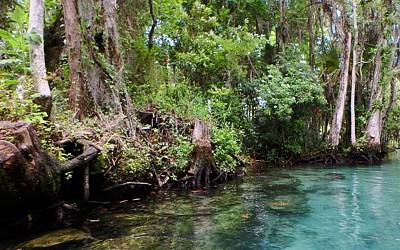 Photograph - Three Sisters Springs by Sheri McLeroy