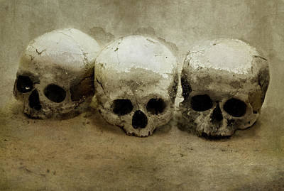 Photograph - Three Skulls by Jaroslaw Blaminsky