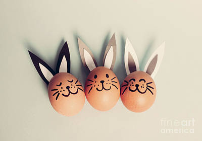 Photograph - Three Smiling Bunnies Laying On The Floor. by Michal Bednarek