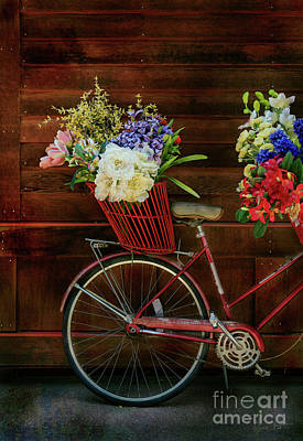 Photograph - Three Speed Flower Bicycle by Craig J Satterlee