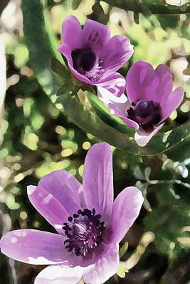 Painting - Three Spring Anemone Flowers by Tracey Harrington-Simpson