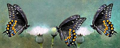Digital Painting - Three Swallowtail Butterflies by Barbara Chichester