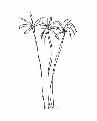 Greetings Card Drawing - Three Tall Palm Trees- Art By Linda Woods by Linda Woods