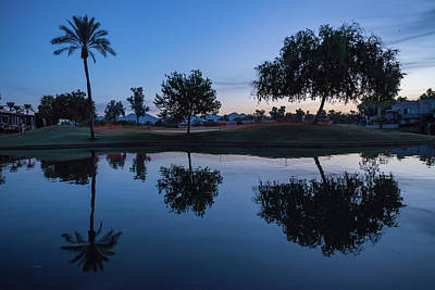 Photograph - Three Tree Reflection At Sunrise In Scottsdale by Anthony Doudt