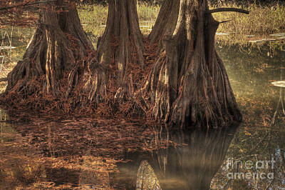 Art Print featuring the photograph Three Trees In Lake Murray by Tamyra Ayles