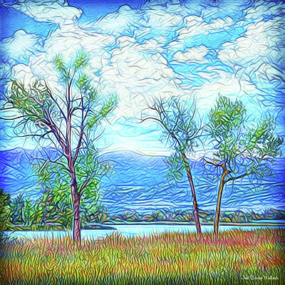 Digital Art - Three Trees - Mountain Lake In Boulder County Colorado by Joel Bruce Wallach