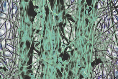 Photograph - Three Trees With Clinging Vines by Gina O'Brien