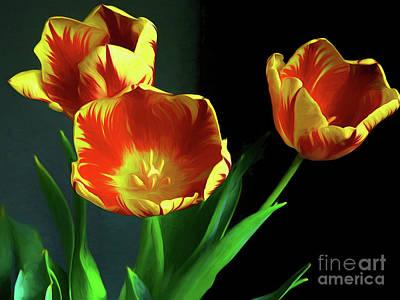 Spring Bulbs Photograph - Three Tulips Photo Art by Sharon Talson
