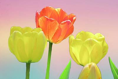 Digital Art - Three Tulips. by Rusty R Smith